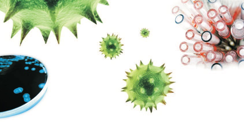 jornada-virus